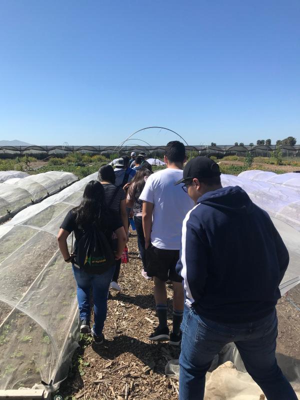 Agriculture_Farm_Tour_12