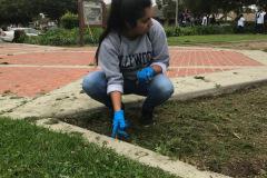 Spring_Park_Cleanup_5