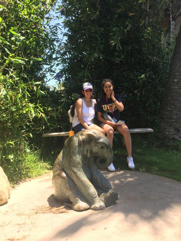 UCSB_Zoo_15