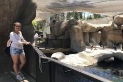 UCSB_Zoo_10